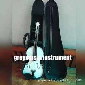 Violin greymusic seri 330