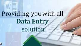 Data entry,article writing,Epic systems,email handling,excel need