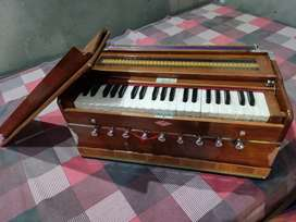 Harmonium 5 months old A1 condition