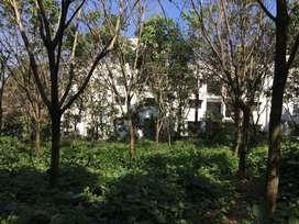 4 acres elevated plot