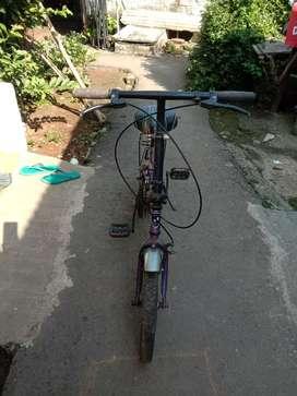 Sepedah lipat aleoca