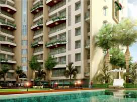 Luxurious 1bhk flat in kalyan