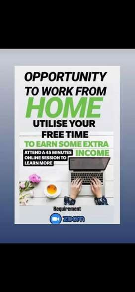 DIGITAL WORK FROM HOME  OPPORTUNITY