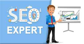 I am looking for Remote SEO Work, I have 6+ Years of SEO Experience