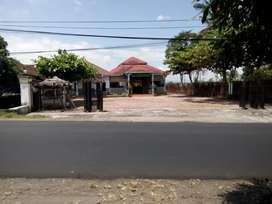 Rumah makan jalur provinsi cocok untuk investasi area arjasa Jember