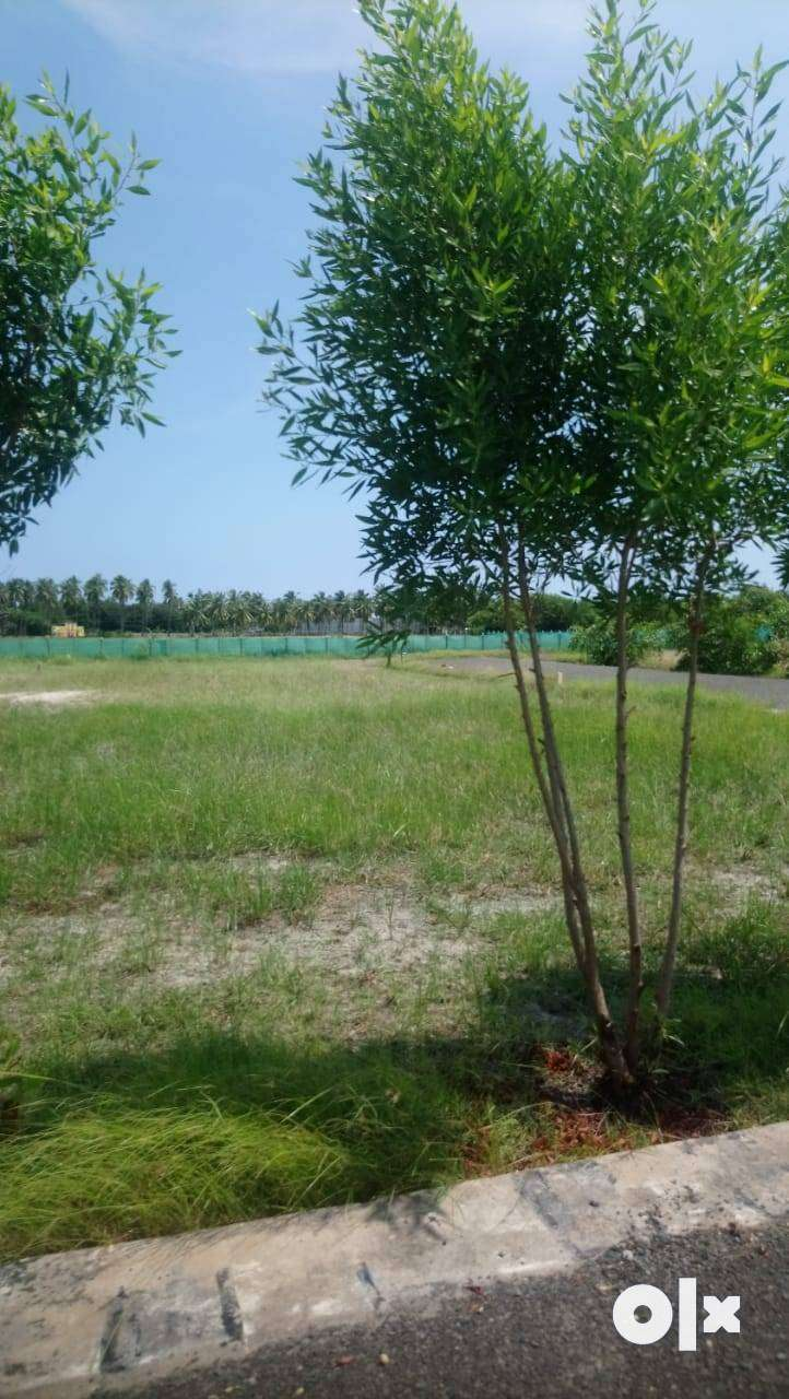 Plots with approved bank loan in Padapai 0