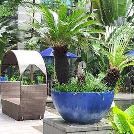pot tanaman mangkok dekorasi hotel berbintang