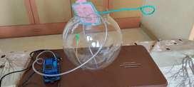 Glass aquarium with air pump