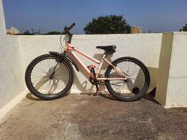 Bicycle 24