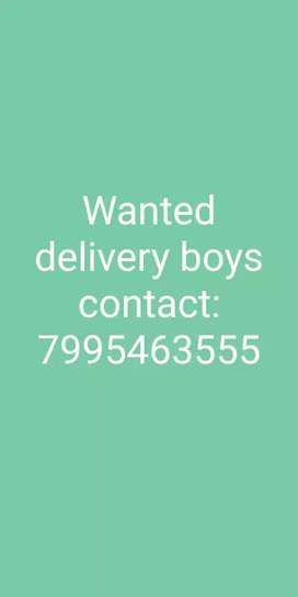 Wanted delivery boys in As Rao nagar