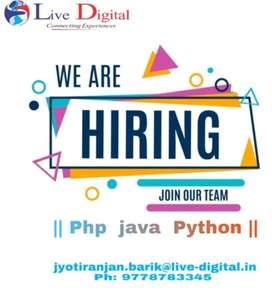 Java developer/Software Engineer) Software developer