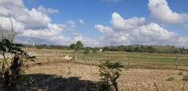 Jual tanah seluas 4000 m²