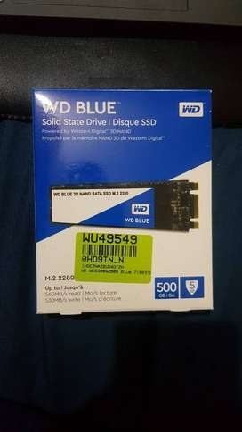 WD Blue 3D 500 GB Laptop Internal Solid State Drive