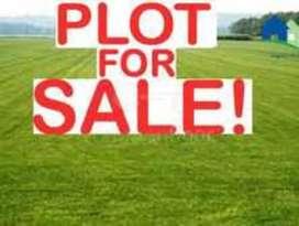 House / Plot for Sale
