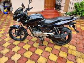 Bajaj Pulsar 150cc in mint condition