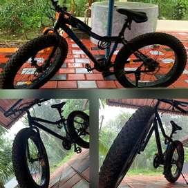 Waltx Dune 3 Fat bike