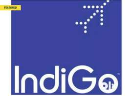MALE AND FEMALE INDIGO HIRING APPLY FAST.