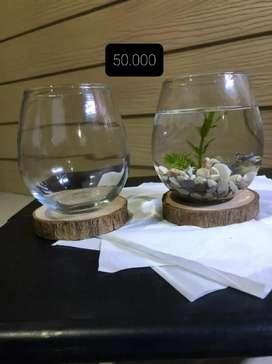 Aquarium mini satu set lengkap (ikan, batu hias, tanaman hidup)