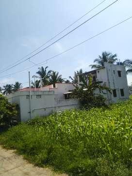 Palladam to Karanam pettai main road near lakshmi mill bus stop