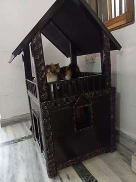 Cats and dog wodden cage