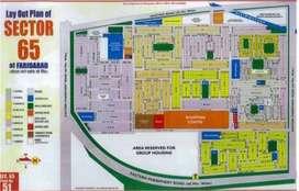 Joda plots of 36 gaj in sector 65 faridabad