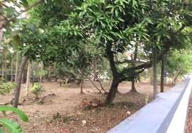 73cents residential land at Thevara