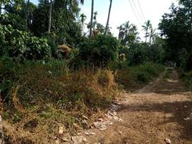 MANAKODY, THRISSUR, PLOT FOR SALE, TAR ROAD FRONTAGE, PLOTS AVAILABLE