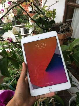 iPad mini 5 64gb garansii panjang