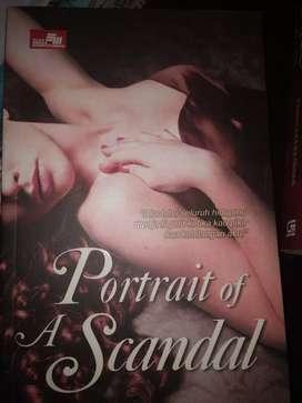 Novel potrait of scandal