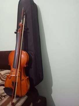 Violin(Hertz) brand
