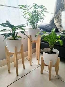 Rak bunga stand pot bunga interior