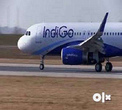 Indigo is an Indian low-cost airline headquartered at India. It is the 0