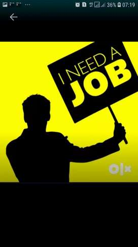 JOB for MNC company