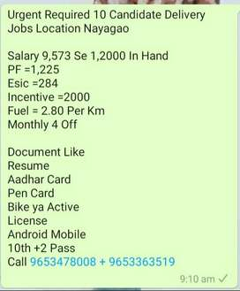 Urgent Required 10 Candidate Delivery Jobs Location Nayagao