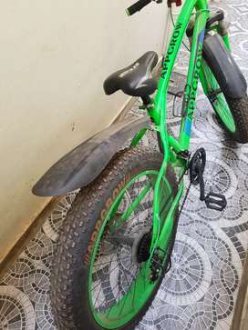 New bicycles with fat tyres 2 month old