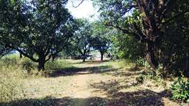 Damtouch 10 Acre NA land for sale At Karjat (30 crore Nego.)