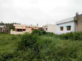 Owner 30X55 185Gaj Plot Sale Badowala Near DSP Chok 500Mtrs From