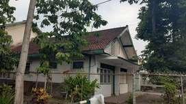 Dijual Murah Rumah Asri Lokasi Strategis di Pusat Kota Malang (NEGO)