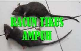 Racun tikus beras SUPER AMPUH