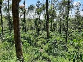 Resort cum agriculture  land