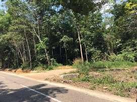 Tanah pinggir jalan raya daerah Tanjung tabalong