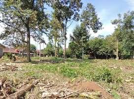 Tanah Murah Mijen Belakang SMP 44 Semarang