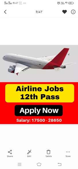 Indigo airlines job