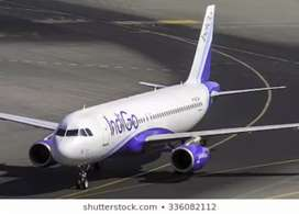 Ground Staff vacancies in Indigo Airlines seats limited