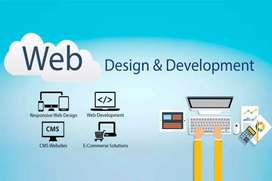 Need website developer which have good knowledge of word press , html.