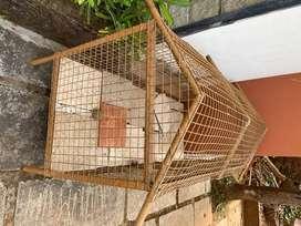 Gog/cat/pets/chicken Cage