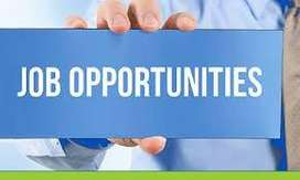 job opportunities for collection executives for banking process