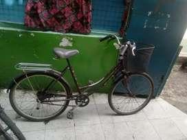 Dijual Cepat sepeda wanita Dewasa pake Keranjang