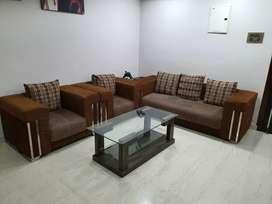 Sofa used 2.5 years