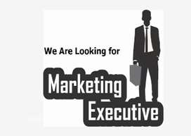 Marketing jobs good salary package with big incentive petrol charges